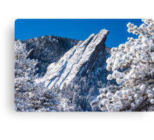 The Third Flatiron - Through The Trees Canvas Print