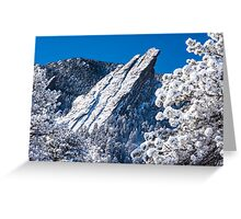 The Third Flatiron - Through The Trees Greeting Card