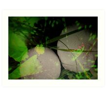 ABSTRACT AT GROUND LEVEL Art Print