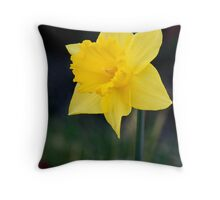 Pretty Yellow Daffodil Throw Pillow