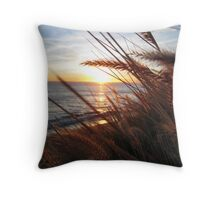 PCH at Deer Creek Road Throw Pillow