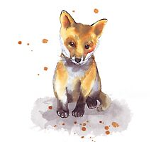 Cute Baby Fox  by ancapora
