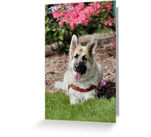 Monster in the Park Greeting Card