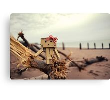 Life's A Beach. Canvas Print