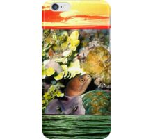 Moray Eel-Cozumel, Mexico iPhone Case/Skin