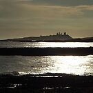 Dunstanburgh Castle from Newton by Alan Rodmell
