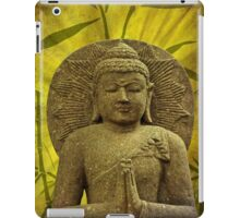 Asia Feeling iPad Case/Skin