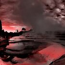 Pink Terraces by Ant Vaughan
