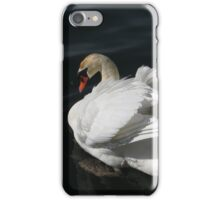 Beautiful Swan iPhone Case/Skin