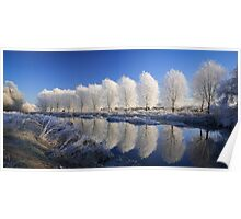 Mirror Trees Poster