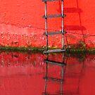 Red ladder Ballydorn by ragman