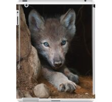 Timber Wolf Pup in Den iPad Case/Skin