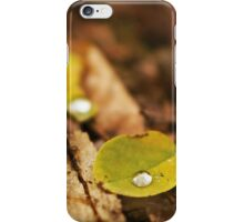 Wet autumn iPhone Case/Skin