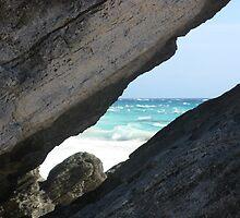 Bermuda Peep by sonja campens