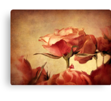 Gilded Roses Canvas Print