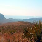 Morning haze over Big Bend by courier