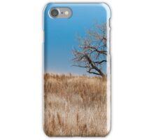 Grasslands iPhone Case/Skin