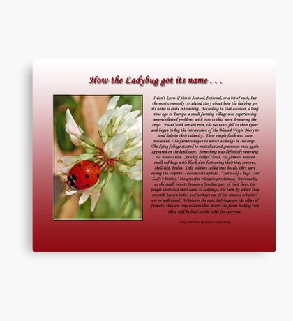 How the Ladybug got its name . . .  Canvas Print