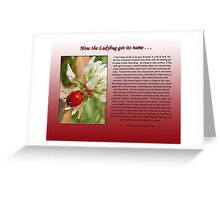 How the Ladybug got its name . . .  Greeting Card