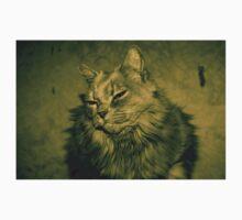 Fluff Cat Dutone 1 Baby Tee