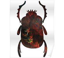 Progression of the Dragon | Egyptian Scarab Beetles  Poster