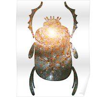 Sacred Whirlpool | Egyptian Scarab Beetles  Poster