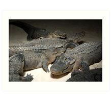 The Gator Club Art Print