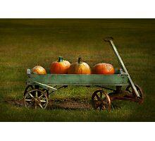Autumn - Pumpkins - Free ride Photographic Print