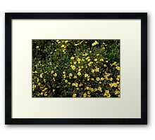 Kawaii Yellow Flowers Framed Print