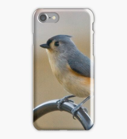 Dressed to the Nines iPhone Case/Skin