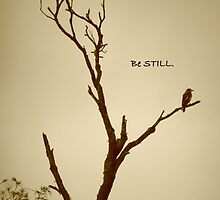 Be Still by FIONA M. HENSHAW