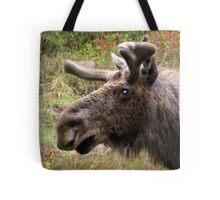Moose up close Tote Bag