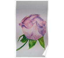Joan's Rose Poster