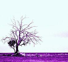 Treefingers by Craig Shillington