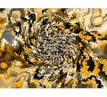 autumn winds Photographic Print