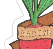 Radish Sticker