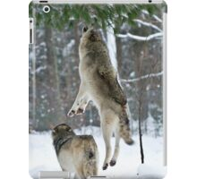 When Wolves Fly iPad Case/Skin