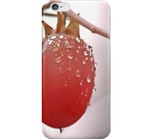 The Last Persimmon iPhone Case/Skin