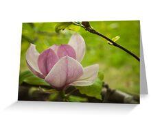 Tree flower Greeting Card