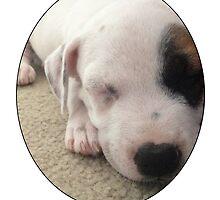 Max The Puppy by Kara  Davison