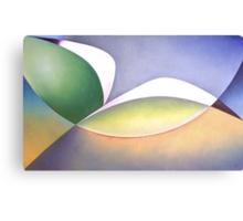 Seabird in Flight Canvas Print