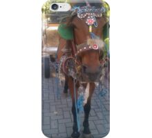 Urban horse iPhone Case/Skin