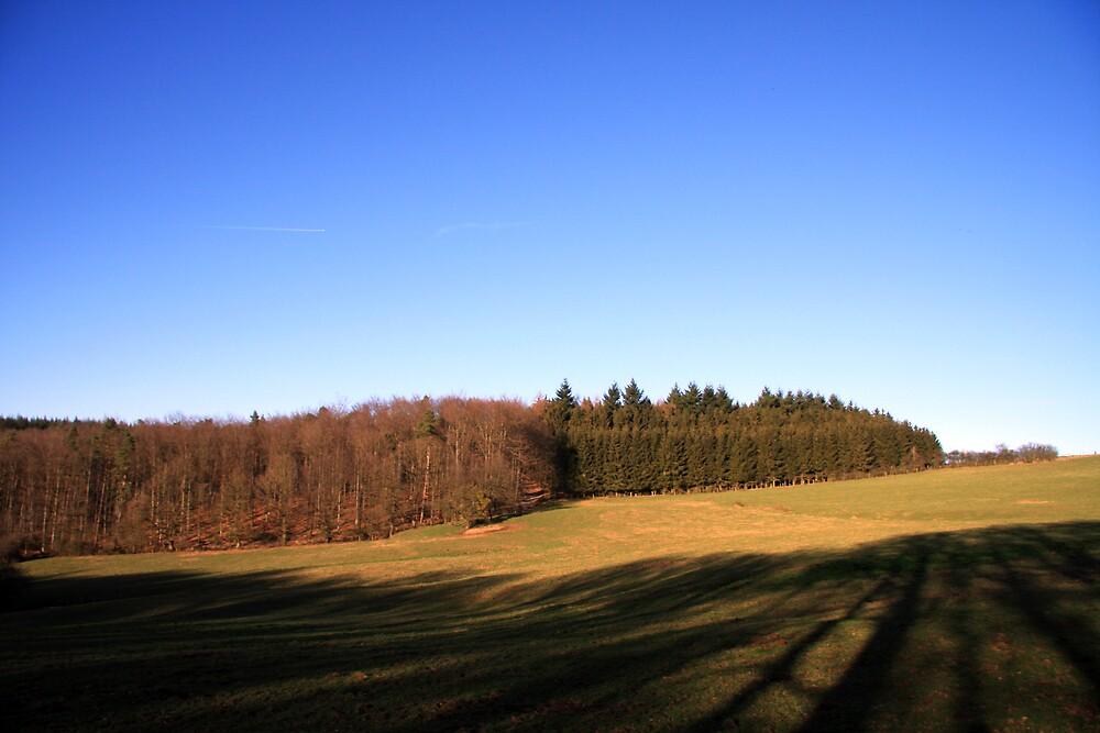 Open field in the Ardennes by Wesley Guijt