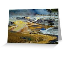 Thermal Pools, Rotorua Greeting Card