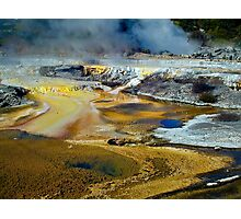 Thermal Pools, Rotorua Photographic Print