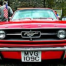 Ford Mustang by oulgundog