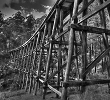 Noojee Trestle Bridge BW by DavidsArt
