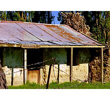 Sod Cottage! - Earth House 1840's - NZ Photographic Print