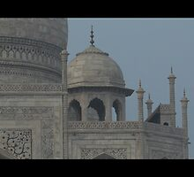 Taj Mahal (Option 2) by Rae Stanton