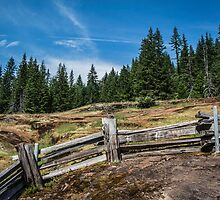 Old Wooden Fence on a Mountain Trail by Nicole Petegorsky